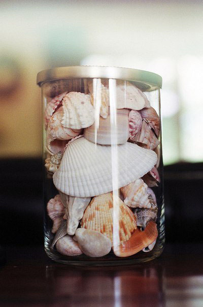 Old jars filled with shells make lovely displays. Fill your favorite antique jar to the top with shells of different sizes. With pinking shears, cut a circle from a pretty piece of cloth and place it over the mouth of the jar. Be sure to cut it large enough so that you can pull it into a ruffle, then tie with jute twine or matching ribbon.