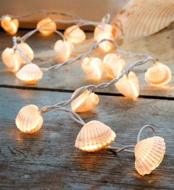 Seashells make wonderful wind chimes,