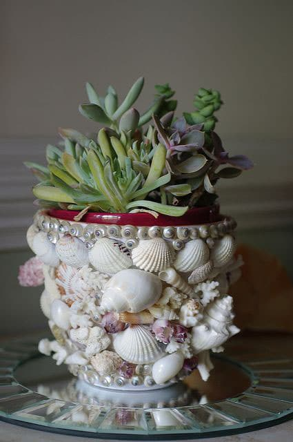 flower pot adorned with seashells