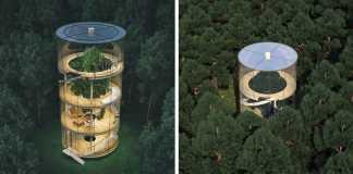 tubular-glass-tree-house-aibek-almassov-masow-architects-fb3__700-png