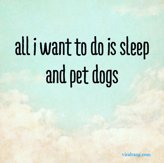 all i want to do is sleep and pet dogs