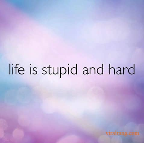 life is stupid and hard