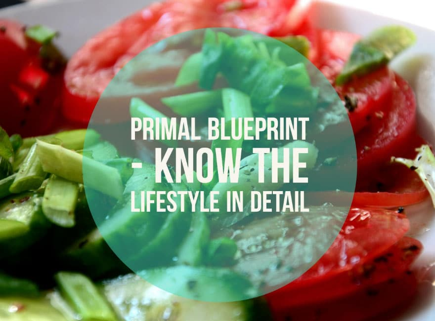 Primal Blueprint Know The Lifestyle in Detail