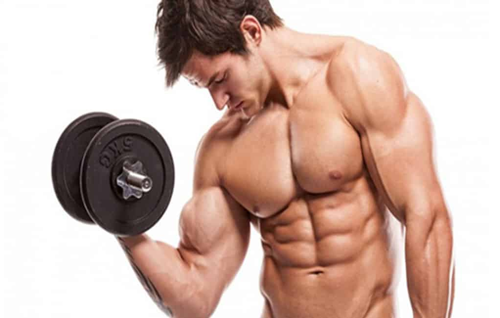 Best Body Building Programs
