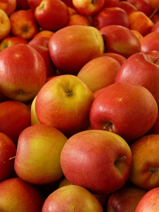 Apple lowers blood cholesterol and reduce lengths of common cold