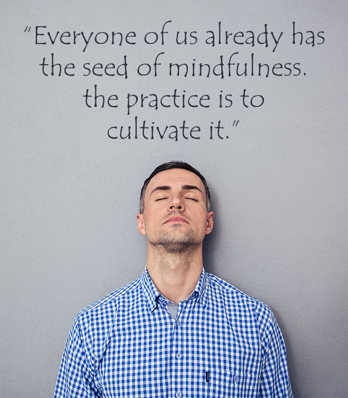 Everyone of us already has the seed of mindfulness. the practice is to cultivate it.