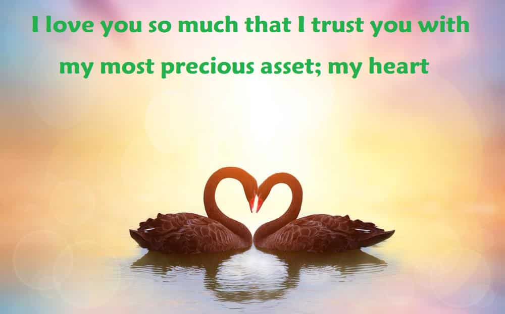 my most precious asset; my heart - 100 Love Quotes To Share