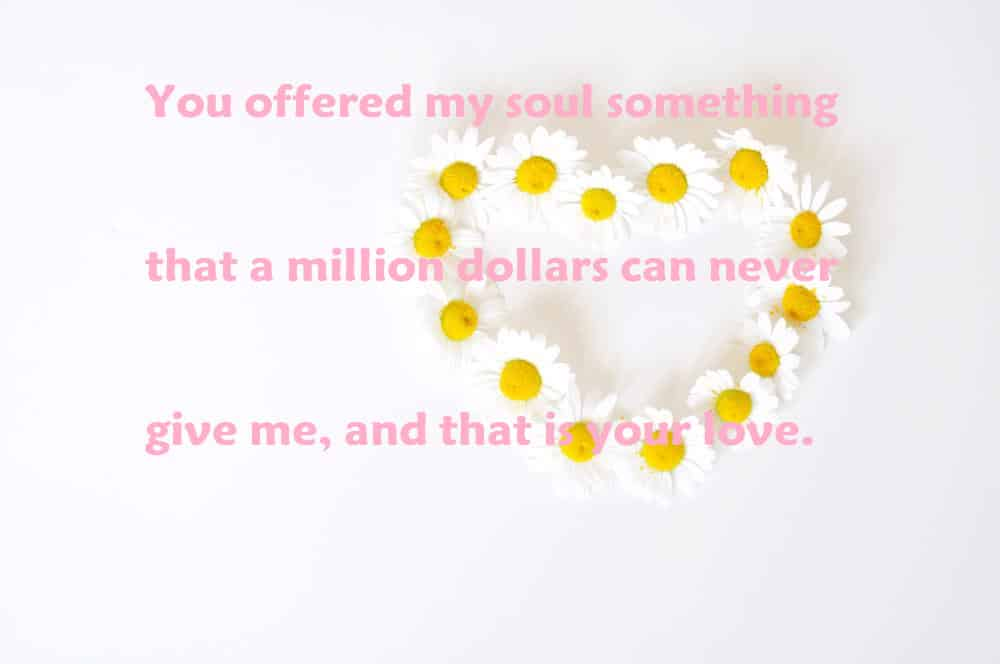 You offered my soul something that a million dollars can never give me, and that is your love. - 100 Love Quotes To Share