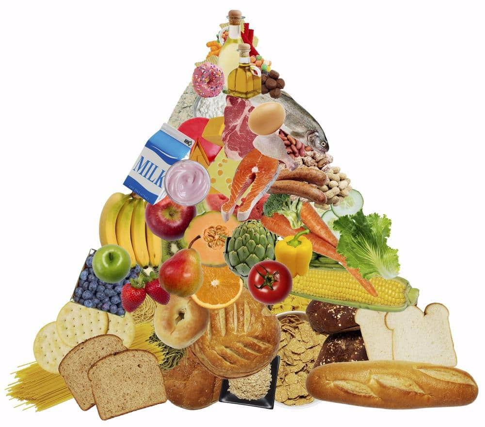 Future Food Pyramid