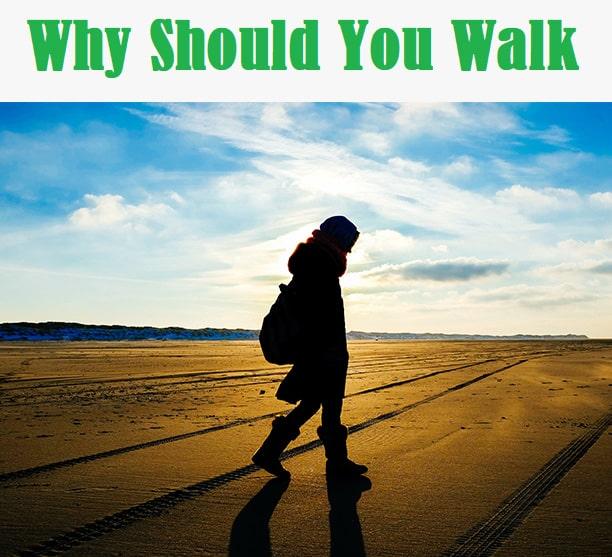 Why Should You Walk