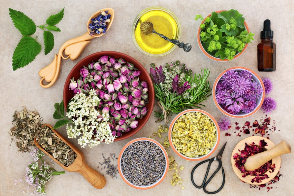 Aromatherapy Miracles - The Complete Guide of Aromatherapy