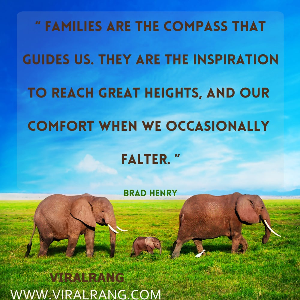Families are the compass that guides us. They are the inspiration to reach great heights, and our comfort when we occasionally falter. Inspirational Family Quotes