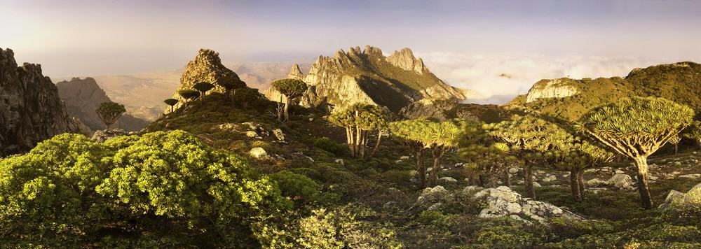 Socotra Island, Yemen. Scenic landscape of Socotra or Soqotra island with sun shining in blue sky, Indian ocean.