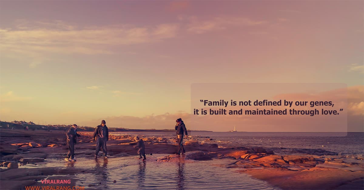Family is not defined by our genes - Family Quotes