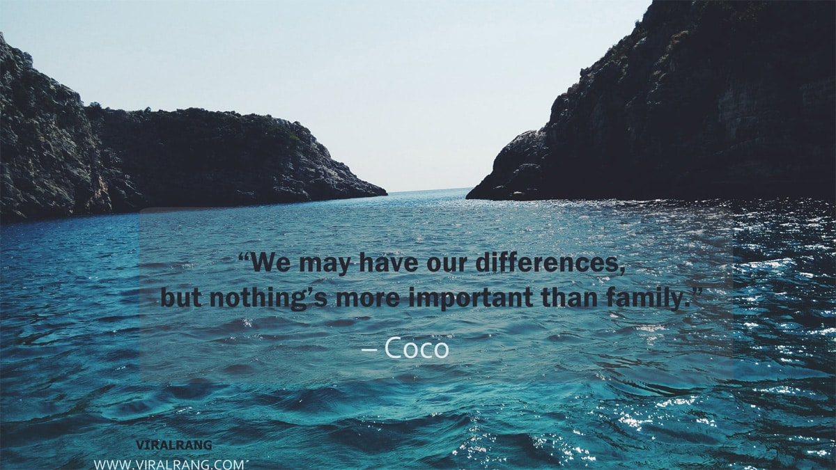 Nothing's more important than family - Family Quotes