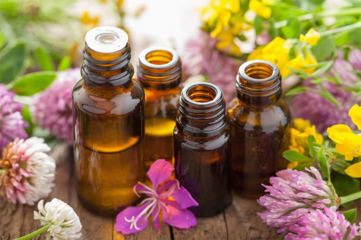 remember when choosing an essential oil: do not expect the cost range will be the same