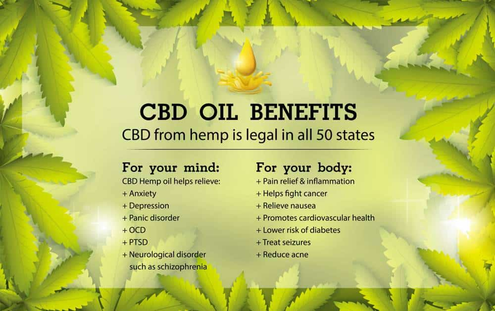 CBD Oil Health Benefits – Viral Rang
