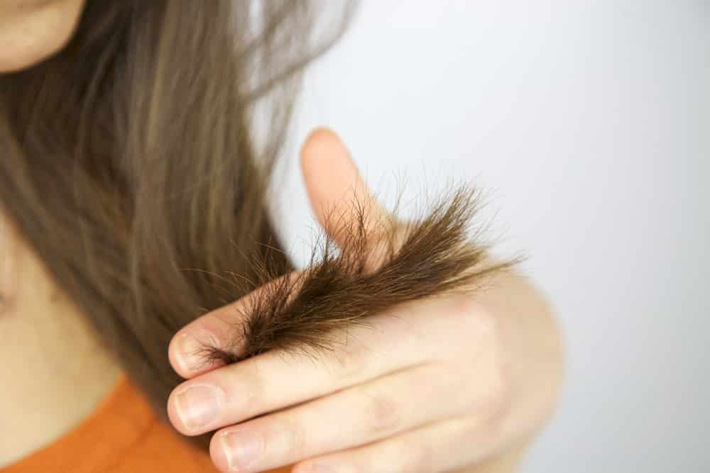 Hair Split Ends