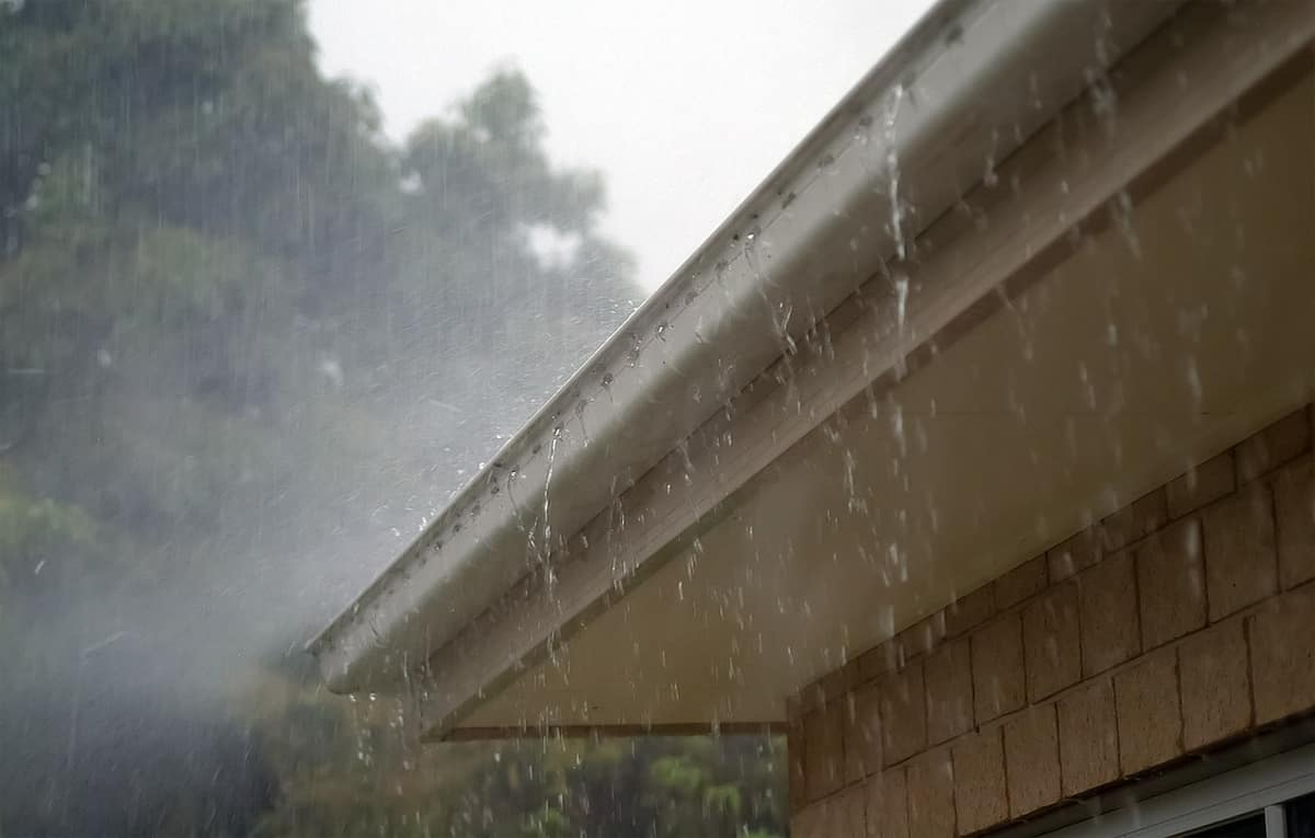 Keeping your gutters in top condition