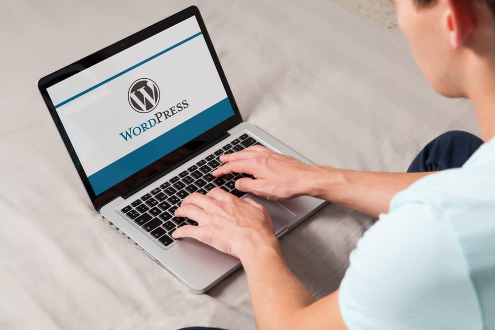 How to Get Word Count Stats in WordPress