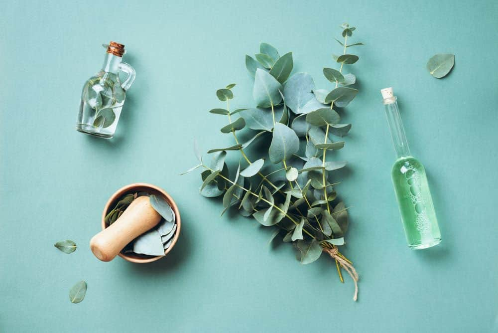 Eucalyptus oil, Essential Oils