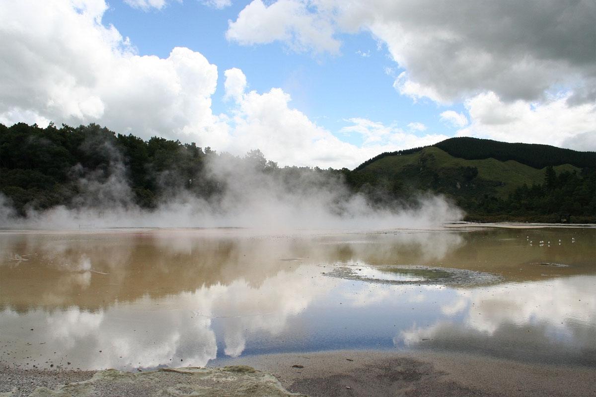 Scout Te Whakarewarewa Geothermal Valley