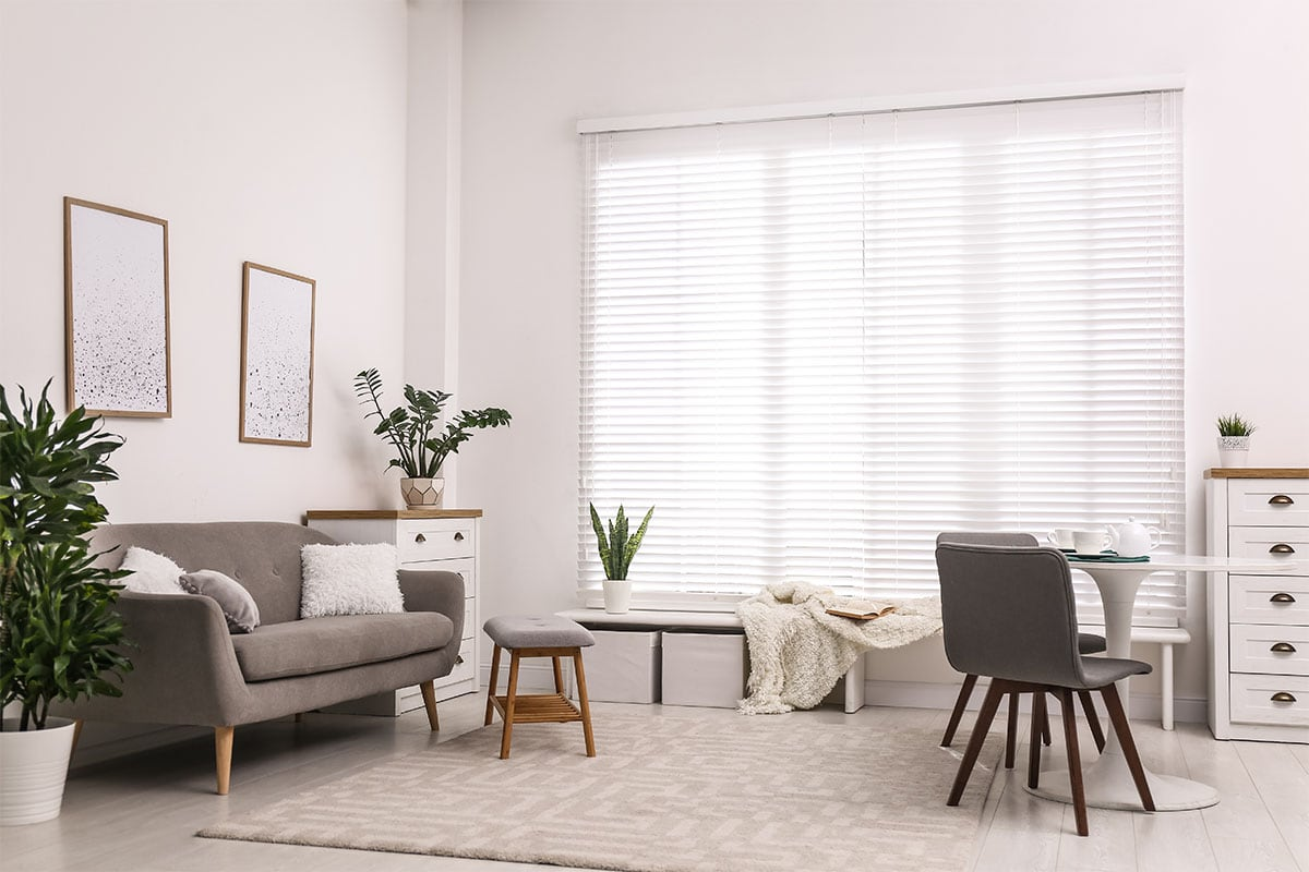 Functional Blinds For Your Living Room