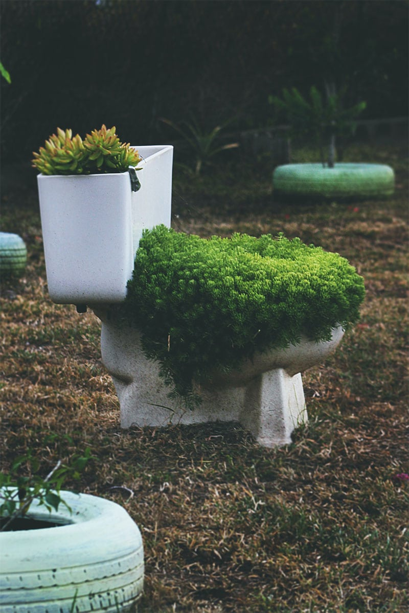 use an old toilet in their garden